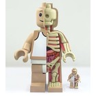 "Anatomic Lego Figure 11"" By Jason Freeny"