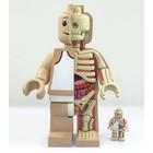 "[P/O] Micro Anatomic Lego Figure 11"" By Jason Freeny"
