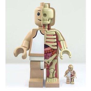 "[P/O] Anatomic Lego Figure 11"" By Jason Freeny"