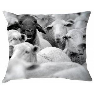 BLOOMINGVILLE BLACK SHEEP PILLOW (incl. filling)