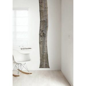 KEK AMSTERDAM TREE 1 WALL STICKER