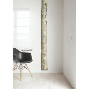 KEK AMSTERDAM TREE 3 WALL STICKER