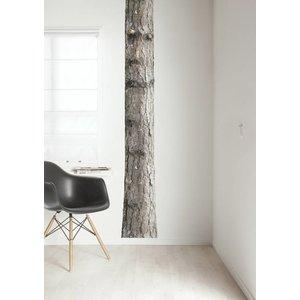 KEK AMSTERDAM TREE 4 WALL STICKER