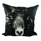 MARS & MORE BLACK SHEEP PILLOW (incl. filling)