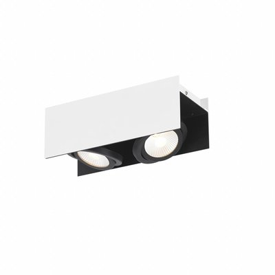 EGLO LED wall / Ceiling spot Vidago 2-light 39316