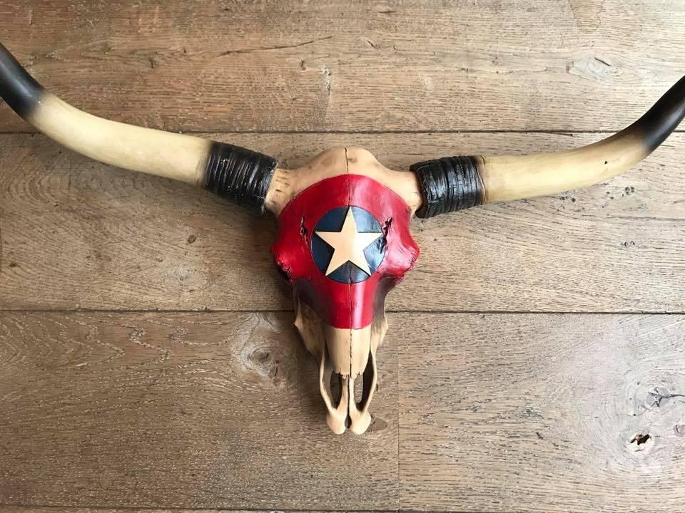 Damn Skull big star
