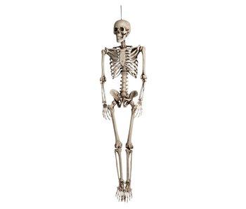Decoratie Skelet (160 cm)