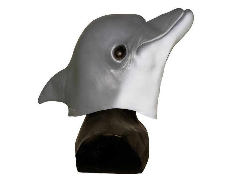 Dolphin mask