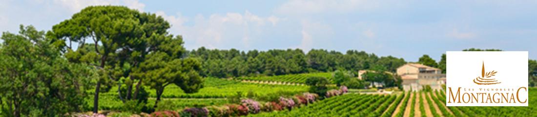 les-vignobles-montagnac