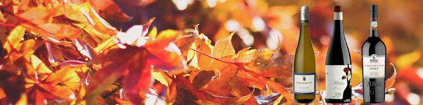 De herfst is begonnen!