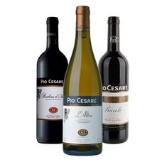 Wijn Cadeau Pakket Pio Cesare