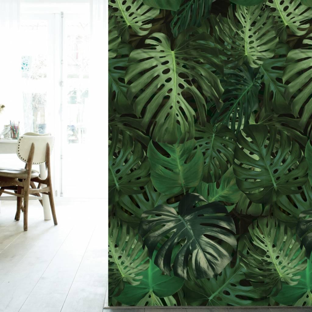 KEK Amsterdam Monstera botanic wallpaper - LIVING AND CO.