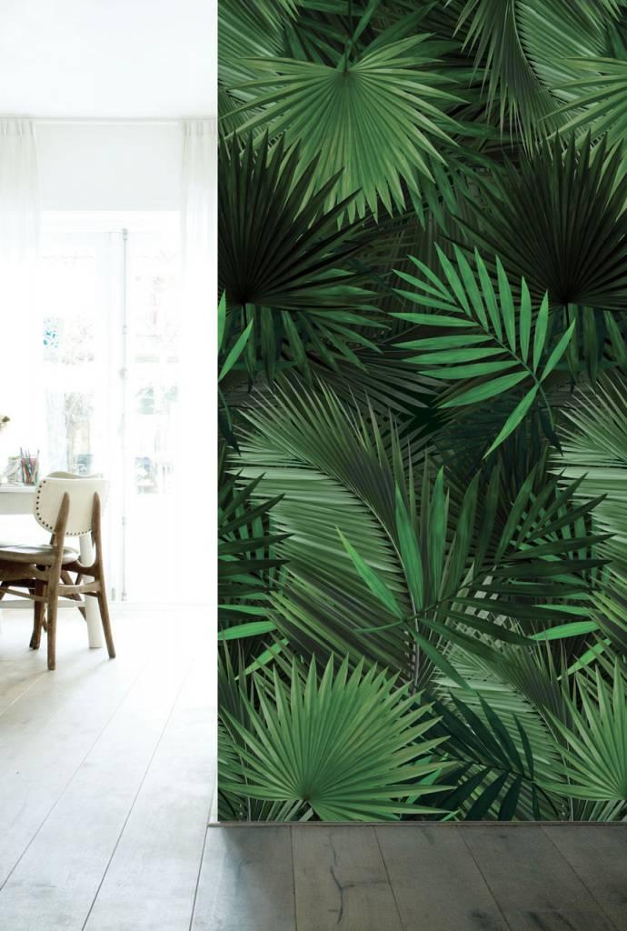 Kek Amsterdam Palm Botanic Wallpaper Living And Co