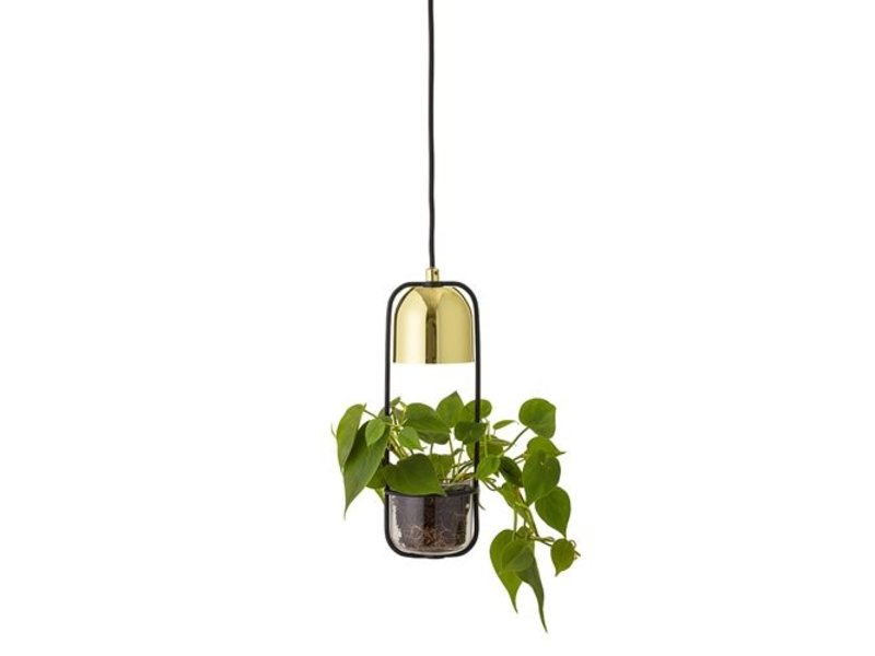 Bloomingville LED-Pendelleuchte Gold-Finish Glas