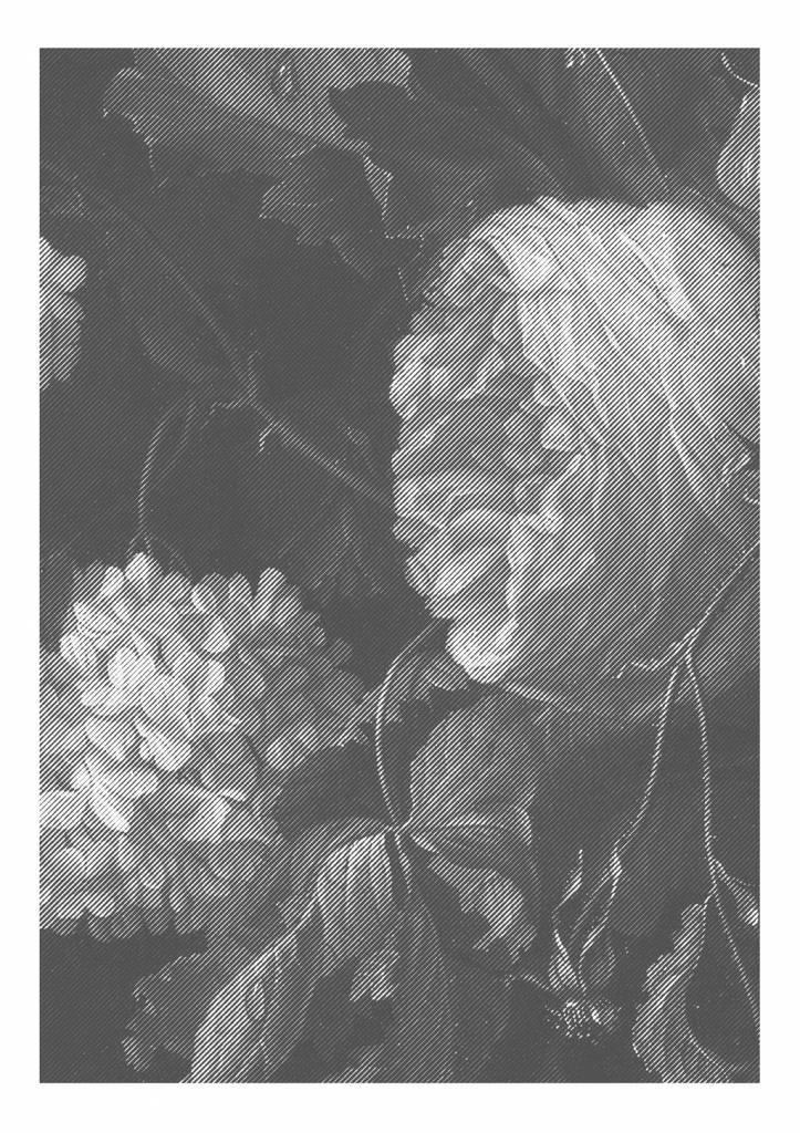 Kek amsterdam black white flowers wallpaper living and co kek amsterdam black white flowers wallpaper mightylinksfo