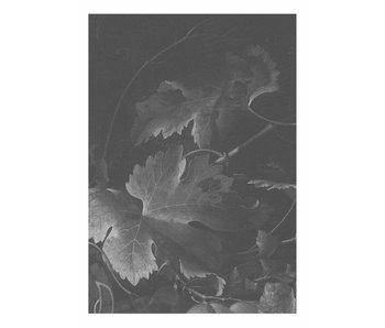 KEK Amsterdam Papier peint fleurs noires et blanches