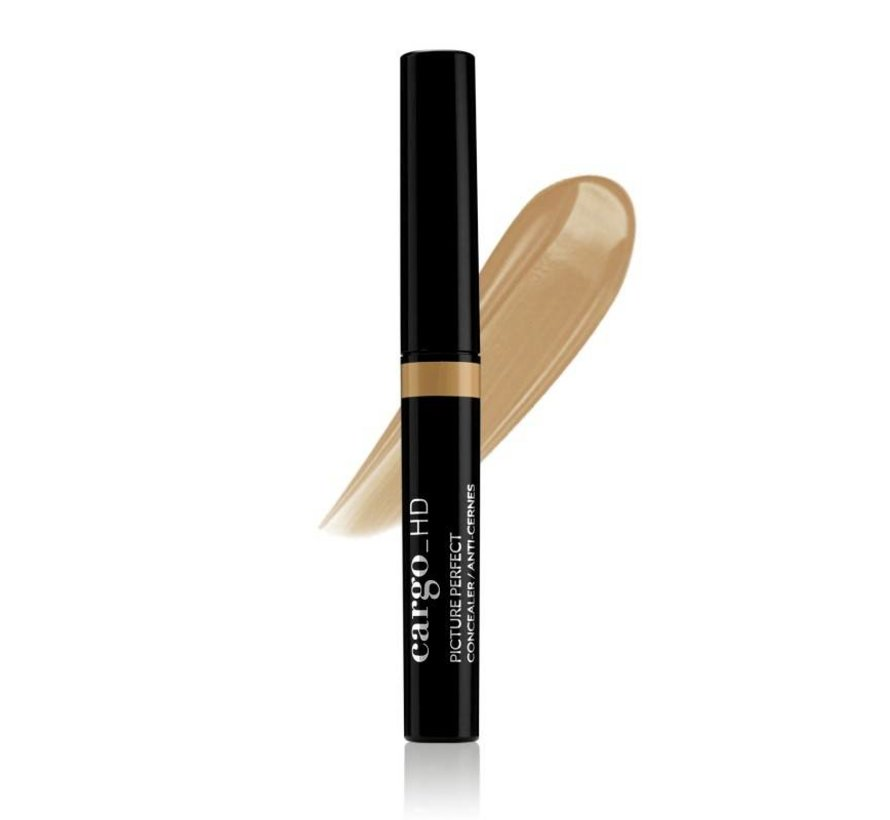 Picture Perfect Concealer - 4W