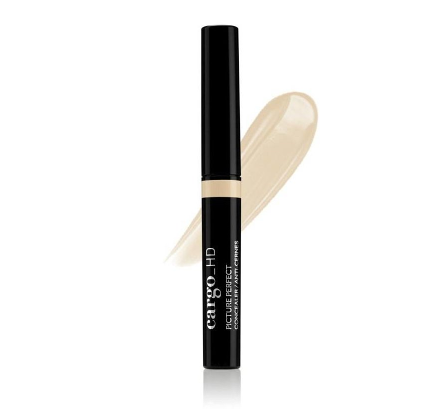 Picture Perfect Concealer - 1C