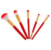 Technic Brush Set