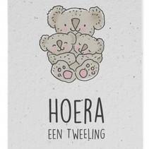 Groeikaart Hoera Tweeling