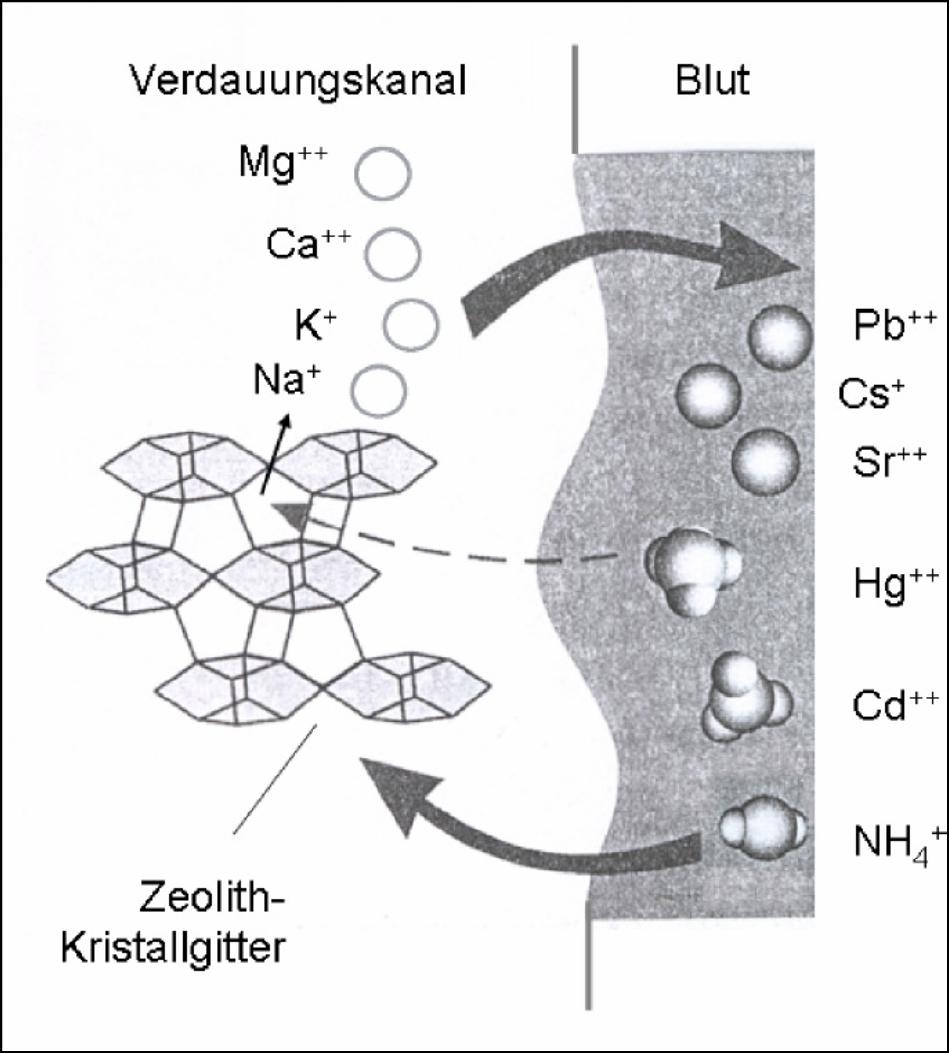 Ionenwisselaar Zeoliet