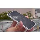 APPLE iPhone 5C Scherm