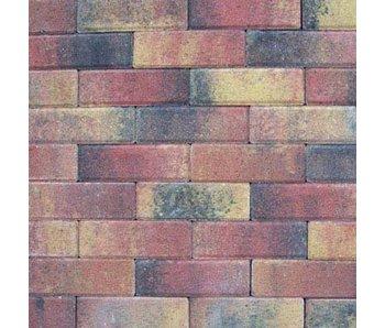 Tremico Dickformat Bunt 20x6,7x6