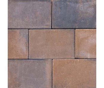 Tremico Bronze 20x30x6 cm