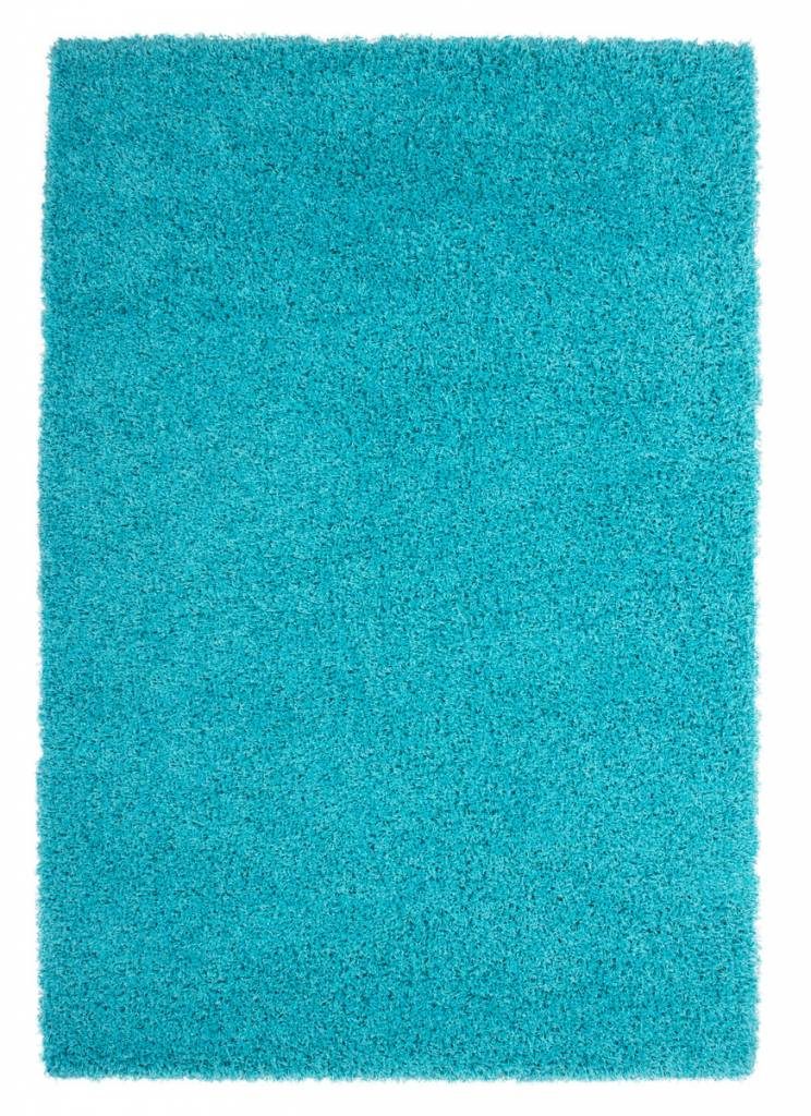 Aqua Rug Home Decor
