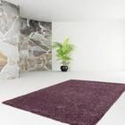 DF0062012-441 Violet Carpet