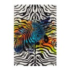 DF0062012-698 Zebra Rug