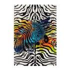 DF0062012-698 Zebra Vloerkleed