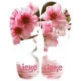 Slippers bloesem