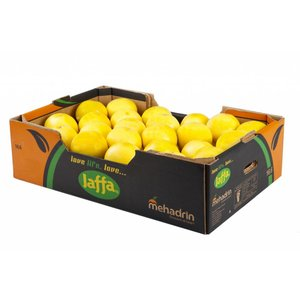 Jaffa White grapefruit 40 pcs