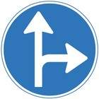 Verkeersbord RVV D06r