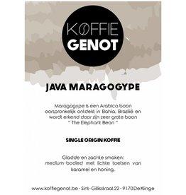 Koffiegenot Java Maragogype
