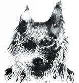 Rock da Kasbah T-shirt wolf