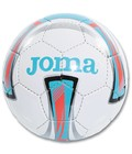 Indoor ball Forte T54 - Couleur : Blanc - Bleu