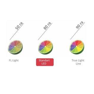 Ceiling Light & 4 x LED Spot - GU10 - RA 80 - 250 lm - 6500k