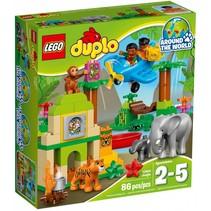 10804 Duplo Jungle