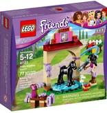 LEGO 41123 Friends Veulen Wasplaats
