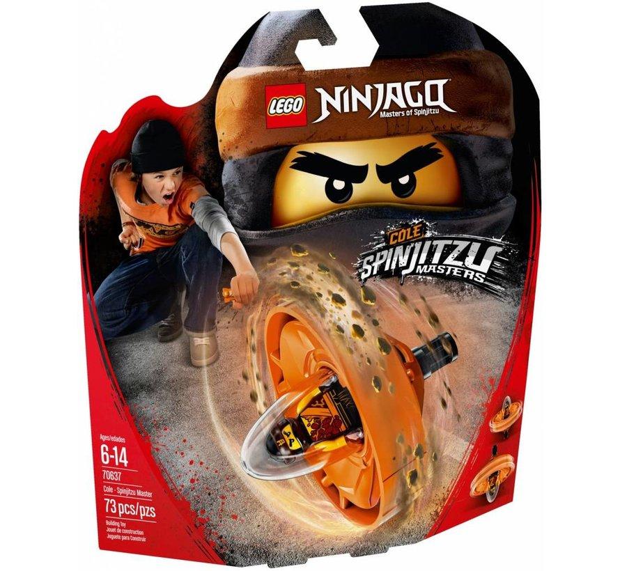 70637 Ninjago Spinjitzu Master Cole