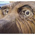 Carving Augenfräser für die Herstellung von Augen bei Holzskulpturen Satz mit 4 Größen