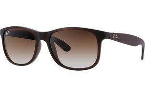 Ray-Ban zonnebril Andy RB 4202 6073/13