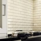 Eurovite Wandtegel Biselado 15x20 Blanco (Doosinhoud 1,00m²)