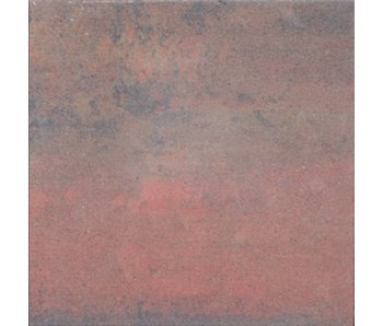TuinVisie Tremico Oud Bont 60x60x6 cm