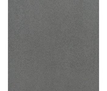 TuinVisie Furora premium Zilver 60x60x4 cm