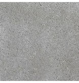 Schellevis Oud Hollandse tegel Grijs 80x40x5 cm