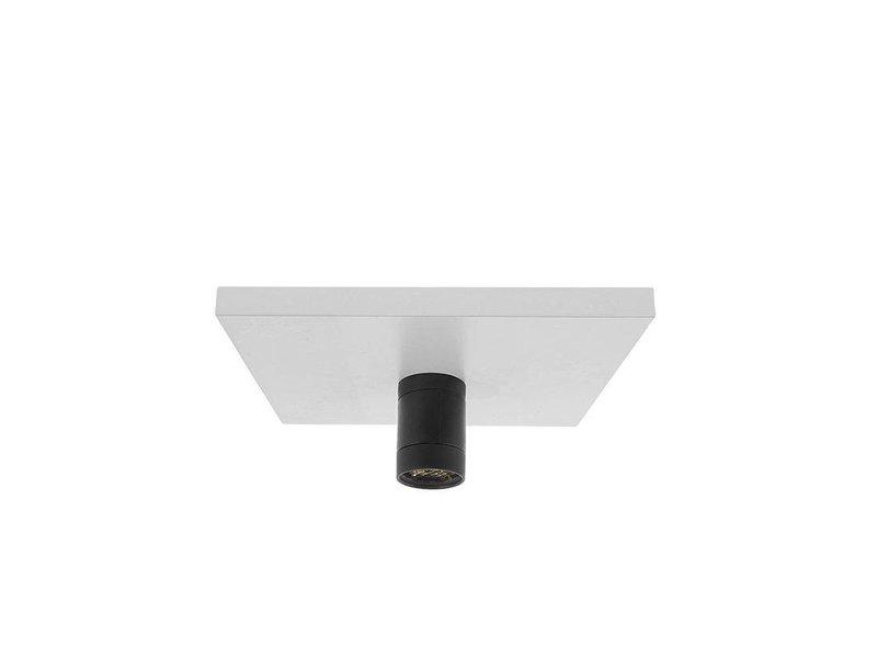 In-Lite Mini Scope ceiling