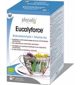 Physalis Eucalyforce biokruideninfusie